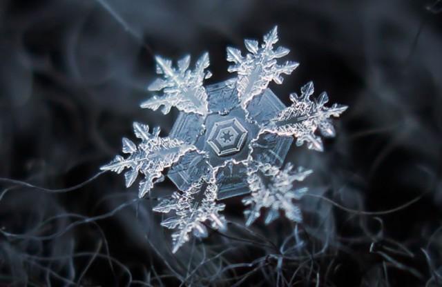 fotografias-em-macro-de-flocios-de-neve-incrivel-14-770x501
